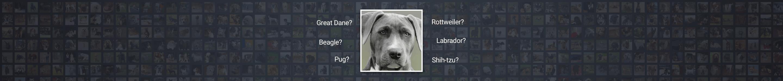 Image for Identifying dog breeds using Keras